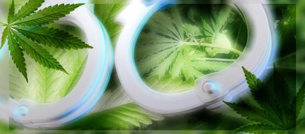 「大麻合法化」問題:合法都市シアトルを参考に考えてみた