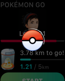 log-161224pokego04