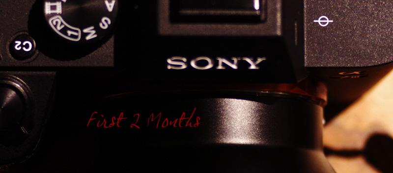 【Review】SONY「α7III」にマウント移行して2ヶ月、Leo的感想9選【Camera】
